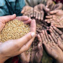 Crisis alimentaria mundial 'está entrando en una nueva y peligrosa fase': ONU