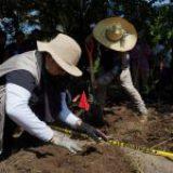 Hallan 100 cuerpos en fosas clandestinas en Guanajuato