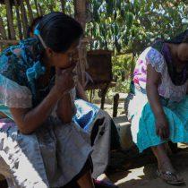 Suman 10 mil 596 muertes por coronavirus entre la población indígena de México