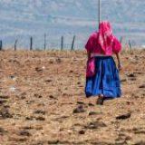 98% de mujeres indígenas no cotizan en seguridad social