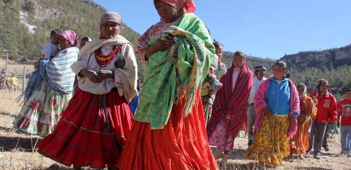 Sierra Tarahumara, en emergencia por crisis alimentaria