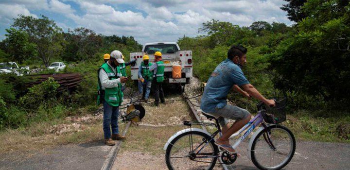 Ecocidio del Tren Maya equivale a 19 'Cancunes'