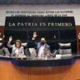 Senado aprueba la reforma eléctrica de AMLO