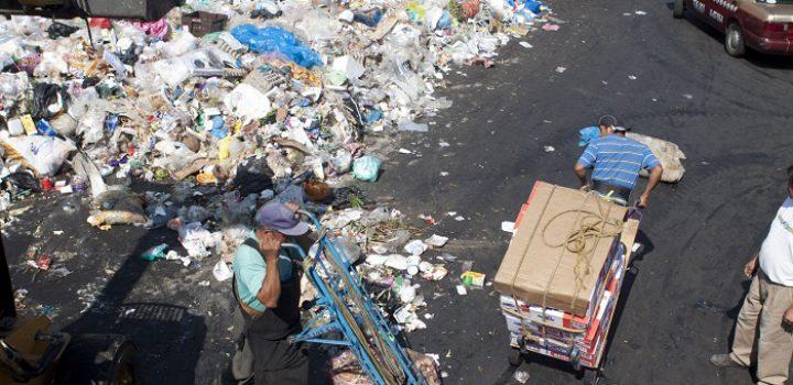 17% de alimentos del mundo, unas 931 millones de toneladas, se van a la basura cada año: ONU