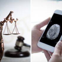 Padrón de datos biométricos de la 4T viola derechos: Inai