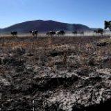 México enfrenta la peor sequía en décadas: NASA