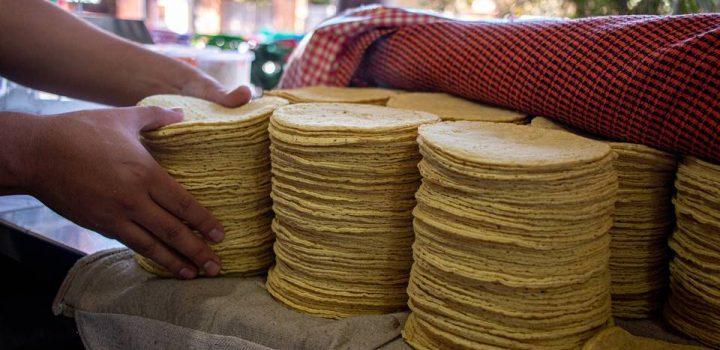 Sobrepasa los 20 pesos el kilo de tortilla en mayor parte del territorio nacional: Profeco