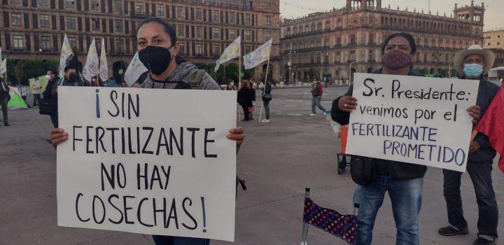 Campesinos de Morelos exigen fertilizantes; AMLO los ignora