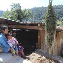 2.1 millones de familias mexicanas no cuentan con vivienda digna, viven en un sólo cuarto