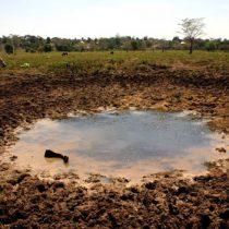 Conagua declara emergencia por sequía 'severa o extrema'