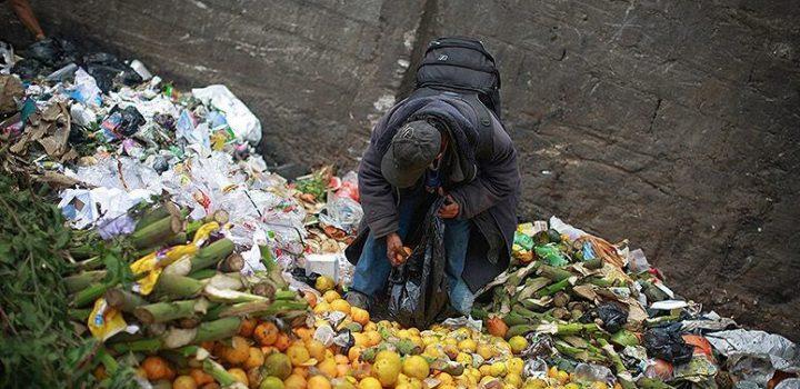 En 2019 se desperdiciaron alimentos por 400 mil mdd: FAO