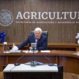 México no limitará importaciones de maíz transgénico de Estados Unidos: Secretaría de Agricultura